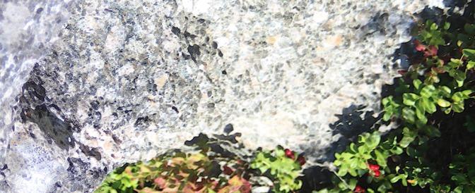 Marjakansi on kätevä apuväline marjanpoimijoille
