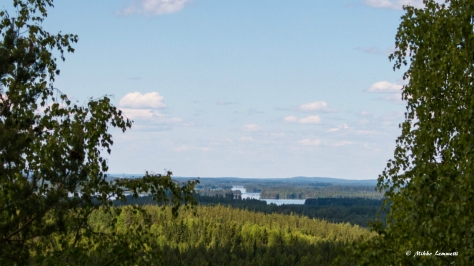 Järvimaisemat näkyvät hienosti, vaikka puita onkin hieman edessä.