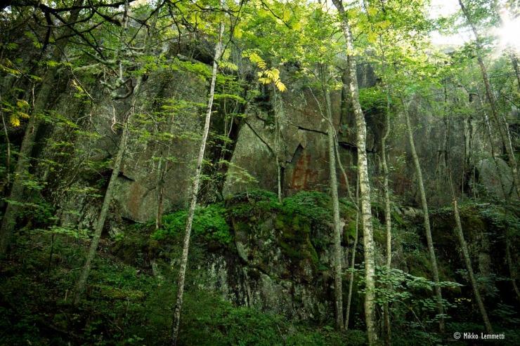 Puiden takaa paljastuvasta kalliosta löytyy merkintöjä.