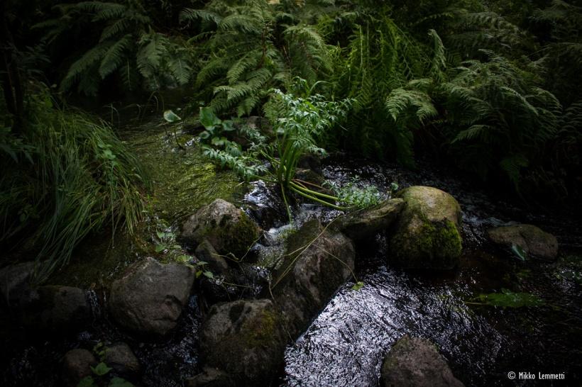 Kirjakkalan ruukkikylässä virtaa rauhallinen joki, jonka äärellä viihtyvät niin saniaiset kuin vierailijat.