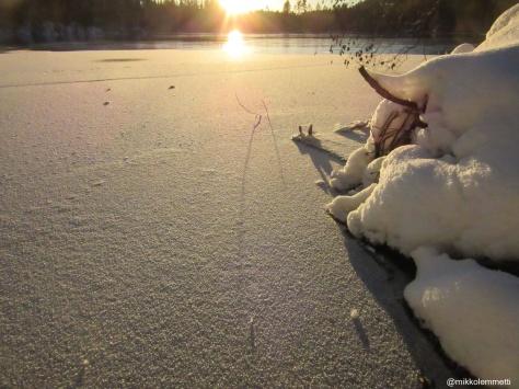snow-3091