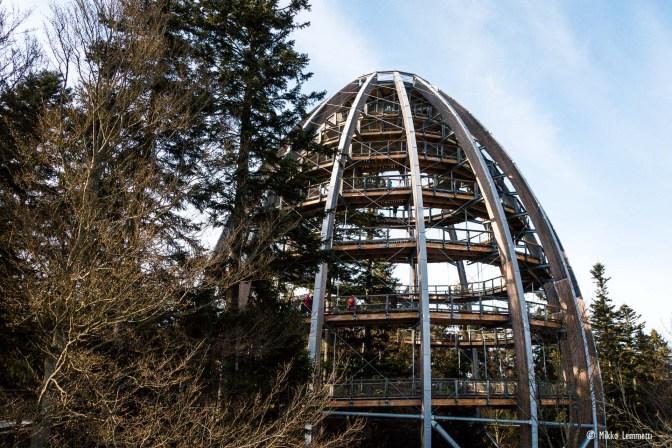 Baijerin Metsän kansallispuiston puunlatvapolku Saksassa – Huh! vai Höh?