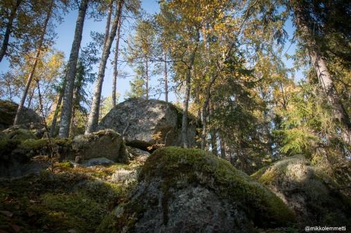 PESÄLUOLAT-1192