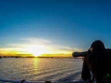 Auringonlaskun katsastaja.