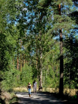 Petra ja Ben Ianin mindfulness-kävelyllä. Petra & Ben on a mindfulness walk lead by Ian.