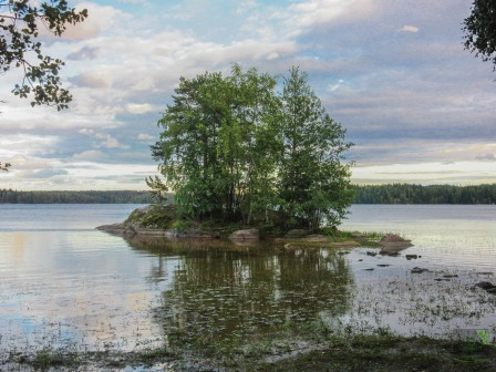 Pieni saari lähellä Puujärven rantaa. A small island close to the shore of Lake Puujärvi