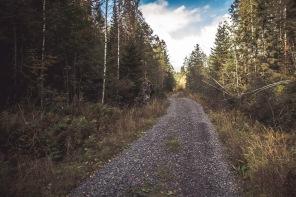"""""""Kokkovuoren Komejikon"""" sijaintipaikan tunnistaa tien vieressä olevasta kivestä, jonka lähistöltä luola löytyy."""